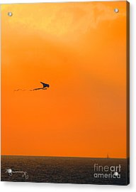 Kite-flying At Sunset Acrylic Print
