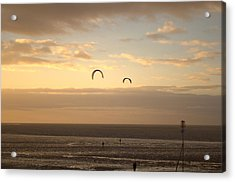 Kites At Sunset Acrylic Print by Dave Woodbridge
