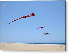 Kites Over Cabo Acrylic Print by Christine Till