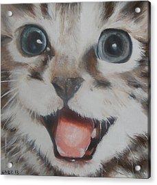 Kitten Acrylic Print