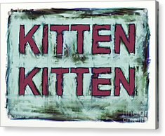 Kitten Kitten 2 Acrylic Print by Keith Mills
