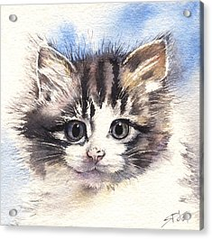 Acrylic Print featuring the painting Kitten Lily by Sandra Phryce-Jones