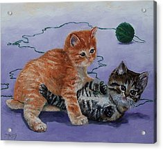 Kittens At Play Acrylic Print by Donna Munsch
