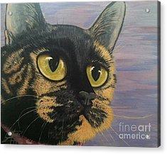 Kitty Acrylic Print