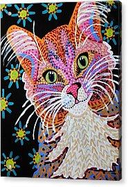 Pink Kitty From Krelly Art Acrylic Print