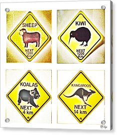 Kiwi Aussi Road Signs Acrylic Print by HELGE Art Gallery
