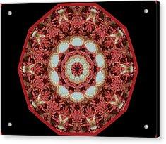 Knotty Twists Kaleidoscope Acrylic Print by Aliceann Carlton