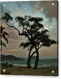 Knurled Tree And Resting Rider Acrylic Print