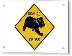 Koala Crossing Warning Sign, Australia Acrylic Print
