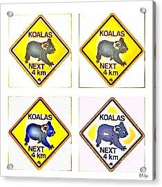 Koalas Road Sign Pop Art Acrylic Print