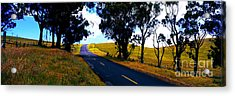 Acrylic Print featuring the photograph Kohala Mountain Road  Big Island Hawaii  by Tom Jelen