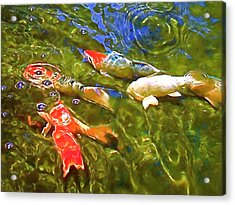 Acrylic Print featuring the photograph Koi 1 by Pamela Cooper