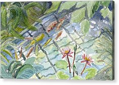 Koi Carp And Waterlilies. Acrylic Print
