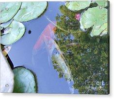 Acrylic Print featuring the photograph Koi by Deborah DeLaBarre