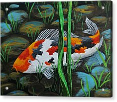 Koi Fish Acrylic Print by Katherine Young-Beck