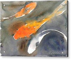Koi Fish No.1 Acrylic Print by Sumiyo Toribe