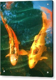 Koi Friends Acrylic Print by Doug Kreuger