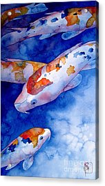 Koi Acrylic Print by Robert Hooper