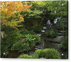 Kokoen Garden Waterfall - Himeji Japan Acrylic Print by Daniel Hagerman