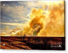 Konza Prairie Burn Acrylic Print by Jean Hutchison