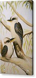 Kooka Duo Acrylic Print