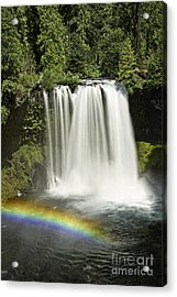 Koosah Falls And Rainbow Acrylic Print