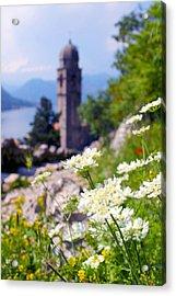 Kotor Wildflowers Acrylic Print by Saya Studios