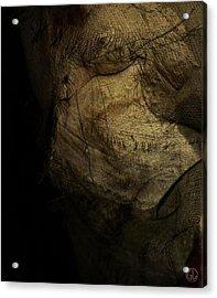 Kraka Acrylic Print by Gun Legler