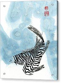 Krazy Koi Acrylic Print