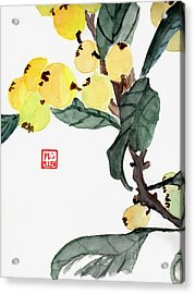 Kumquats  Chinese Watercolor Painting Acrylic Print