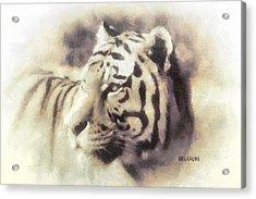 Kwaai Acrylic Print