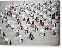 L \'alveare Acrylic Print by Massimo Della Latta