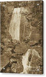 La Coca Falls El Yunque National Rainforest Puerto Rico Prints Vintage Acrylic Print by Shawn O'Brien
