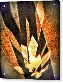 Acrylic Print featuring the photograph La Flamme Qui Enflamme Sans Bruler by Steven Huszar