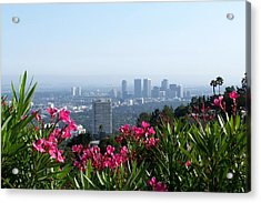L.a. From Beverly Hills Acrylic Print by Dany Lison