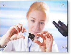 Lab Assistant Holding Microscope Slide Acrylic Print by Wladimir Bulgar