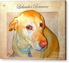 Labrador Art Acrylic Print by Iain McDonald