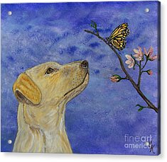 Acrylic Print featuring the painting Labrador Enchanted by Ella Kaye Dickey