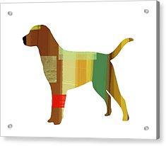 Labrador Retriever Acrylic Print by Naxart Studio