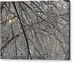 Lace Acrylic Print by Winifred Butler
