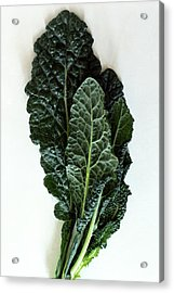 Lacinato Kale Acrylic Print
