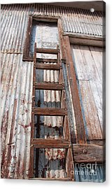 Ladder 1 Acrylic Print by Minnie Lippiatt