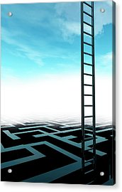 Ladder And Maze Acrylic Print by Victor Habbick Visions/science Photo Library