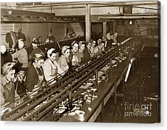 Ladies Packing Sardines In One Pound Oval Cans In One Of The Over 20 Cannery's Circa 1948 Acrylic Print