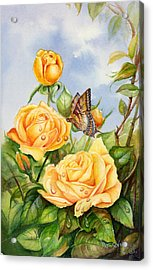 Lady Hillington Tea Rose Acrylic Print