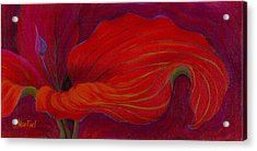 Acrylic Print featuring the painting Lady In Red by Sandi Whetzel