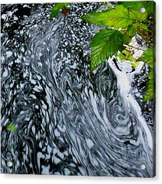 Acrylic Print featuring the photograph Lady Suds by Karen Horn