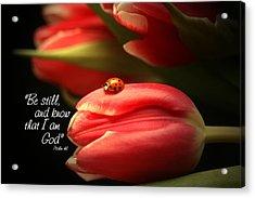Ladybug And Tulip Acrylic Print by Linda Fowler