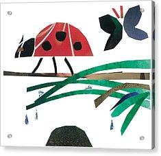 Ladybug Acrylic Print by Earl ContehMorgan