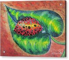 Ladybug On A Leaf Acrylic Print by Debbie Nester